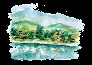 scene-trees-water